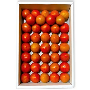 まほろばトマト(1.5kg 37〜39個入)