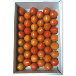まほろばトマト(1.5kg 45個入)